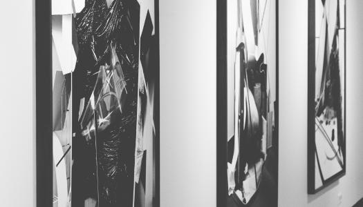 Disfruta de la exposición virtual del artista Loro Coirón
