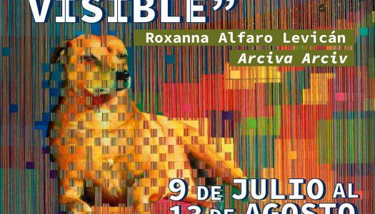 """Participa en la inauguración de la exposición """"Trama Visible"""""""